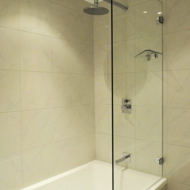 Shower screen and bath tub combo