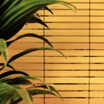Bamboo blinds 150x150