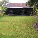 Michael's remodeled backyard garden