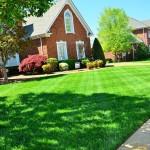 Lawn care 643561 640 150x150