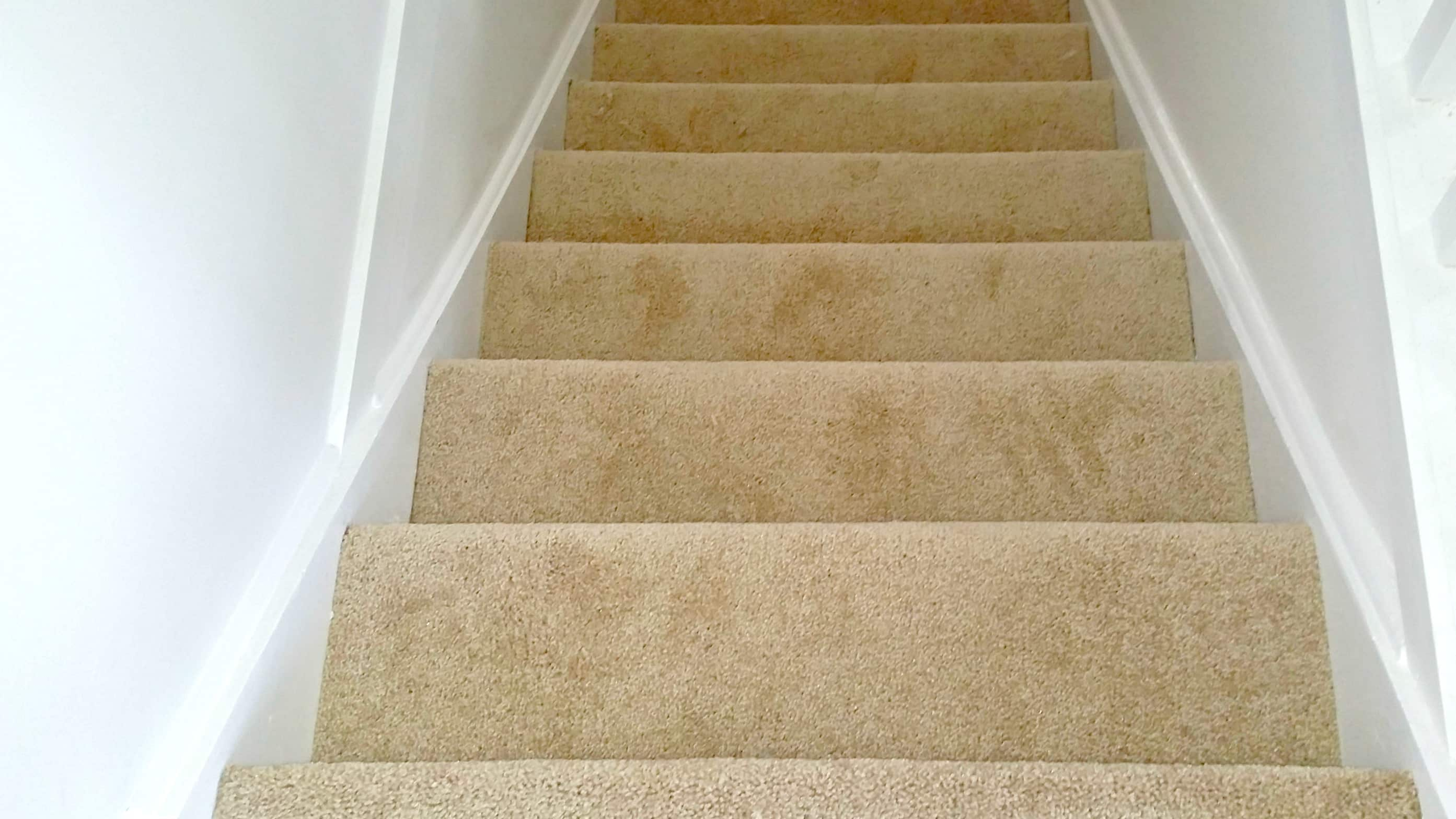 carpet installation job