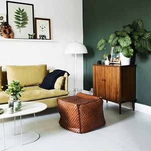 Painted walls of furnished living room