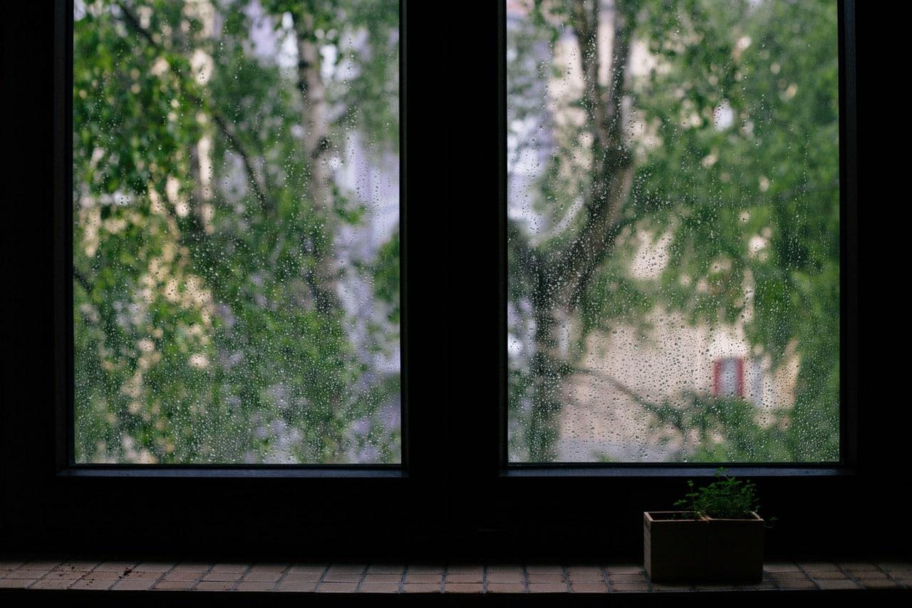 Rain water on window