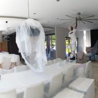 TSC AU house painters ceiling
