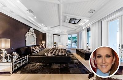 Celine Dion's white and black paint colour scheme