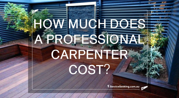 How much does a professional carpenter cost?