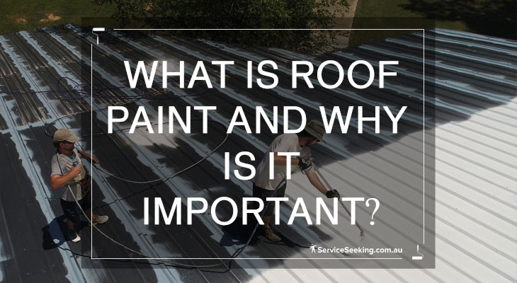 What is roof paint and why it is important