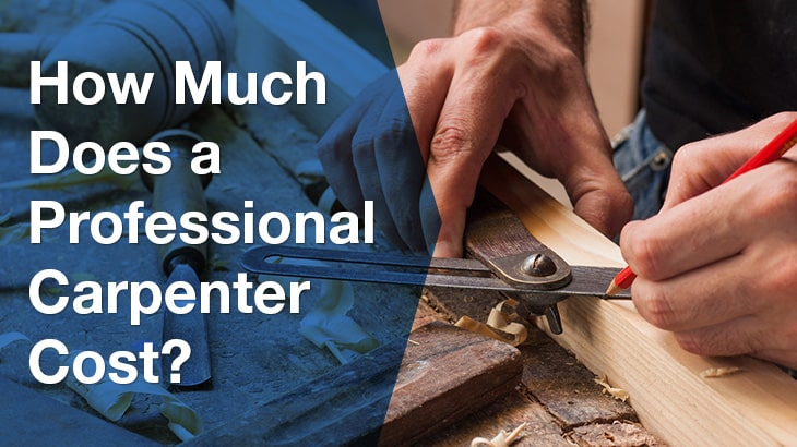 How Much Does a Professional Carpenter Cost