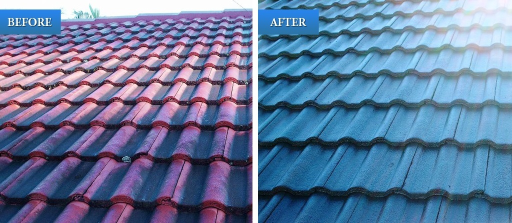 Roof Painting How Much Does It Cost