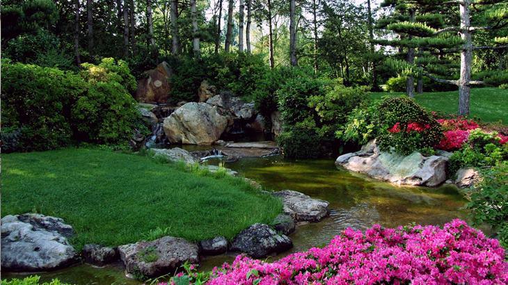 landscaping japanese-garden