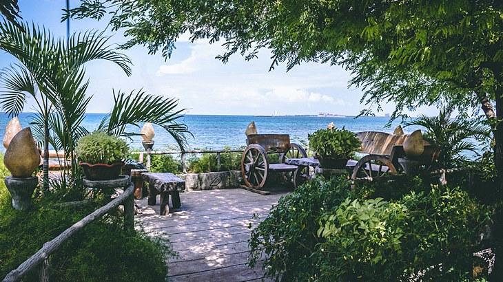Tropical beach garden