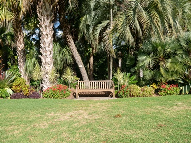 flora garden grass