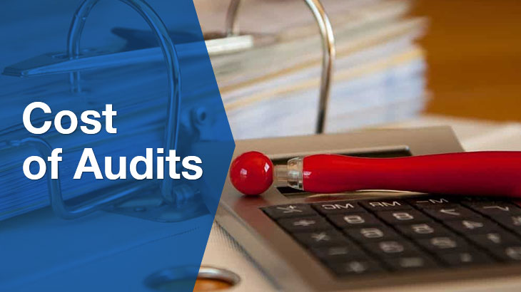 Cost of audits banner
