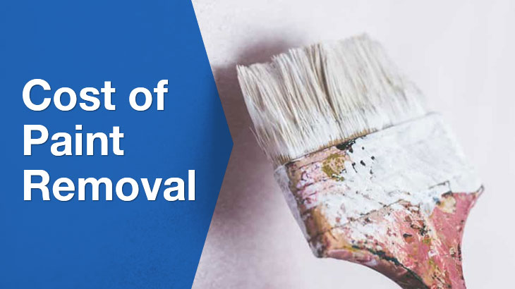 paint removal banner